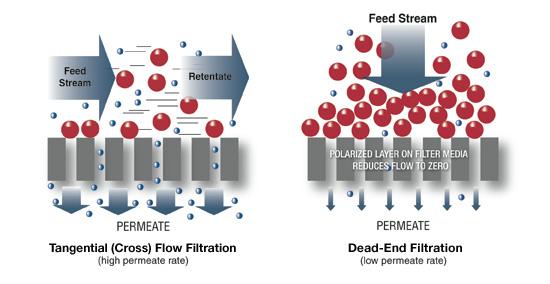 Filter Ultrafiltrasi Source : www.spectrumlabs.com